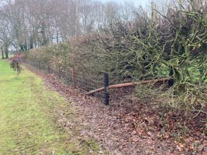 Post Rail Bishop Sutton  Hampshire - Post & Rail, Close Board Fencing Alresford Hinton Ampner Four Marks West Meon Bramdean Ropley Winchester